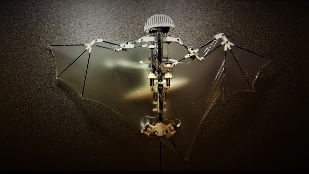 Advanced-Robotic-Bat-Can-Fly-Like-the-Real-Thing