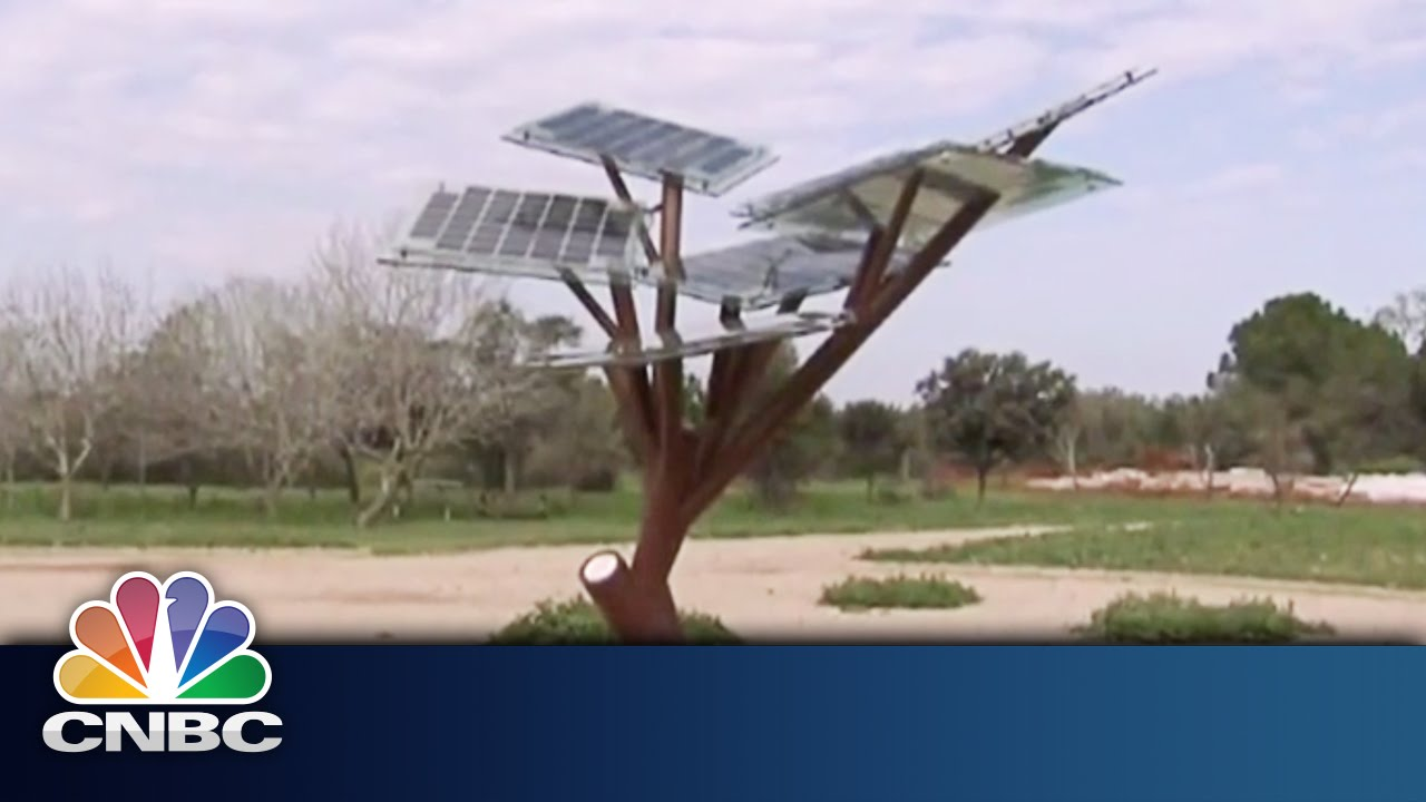 Charging-Your-Phone-With-Trees-Sustainable-Energy-CNBC-International