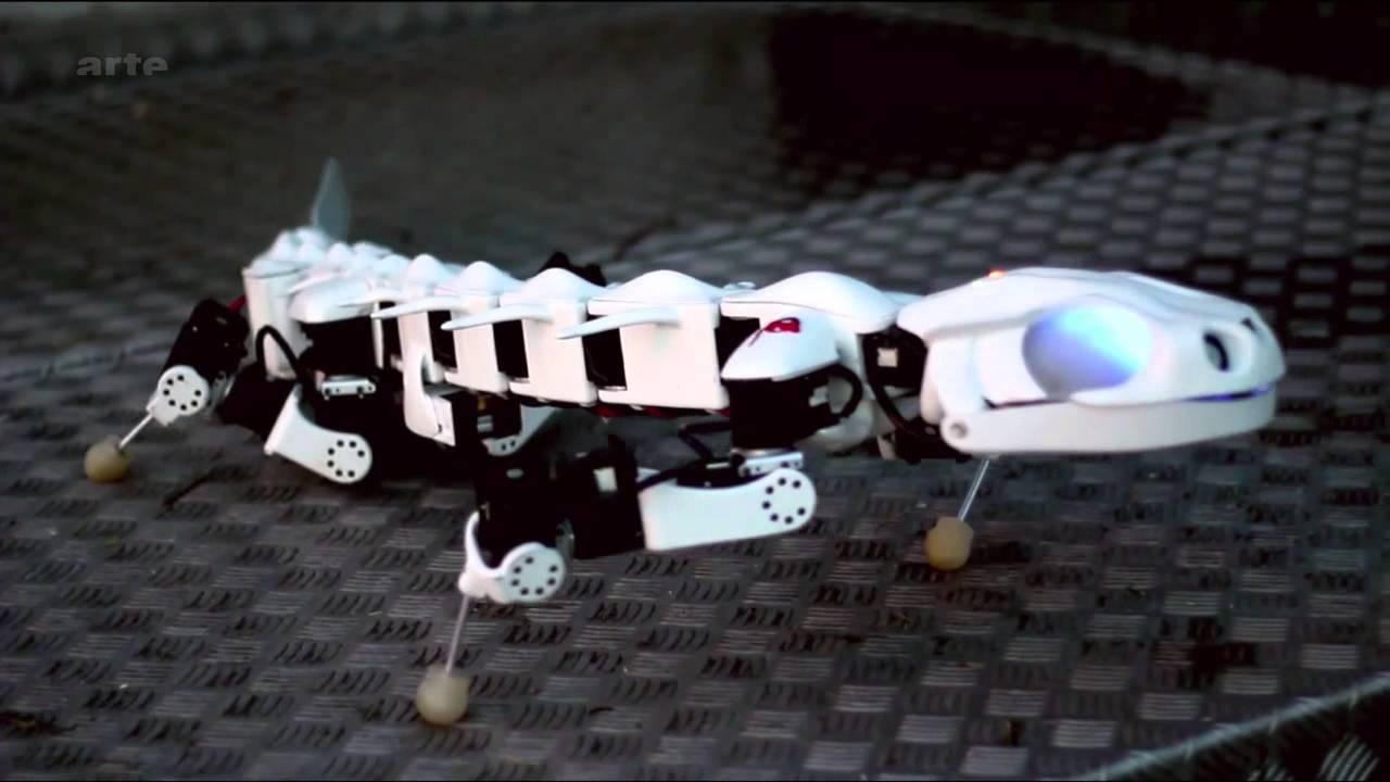Des-robots-inspires-des-animaux-FUTURE-ARTE