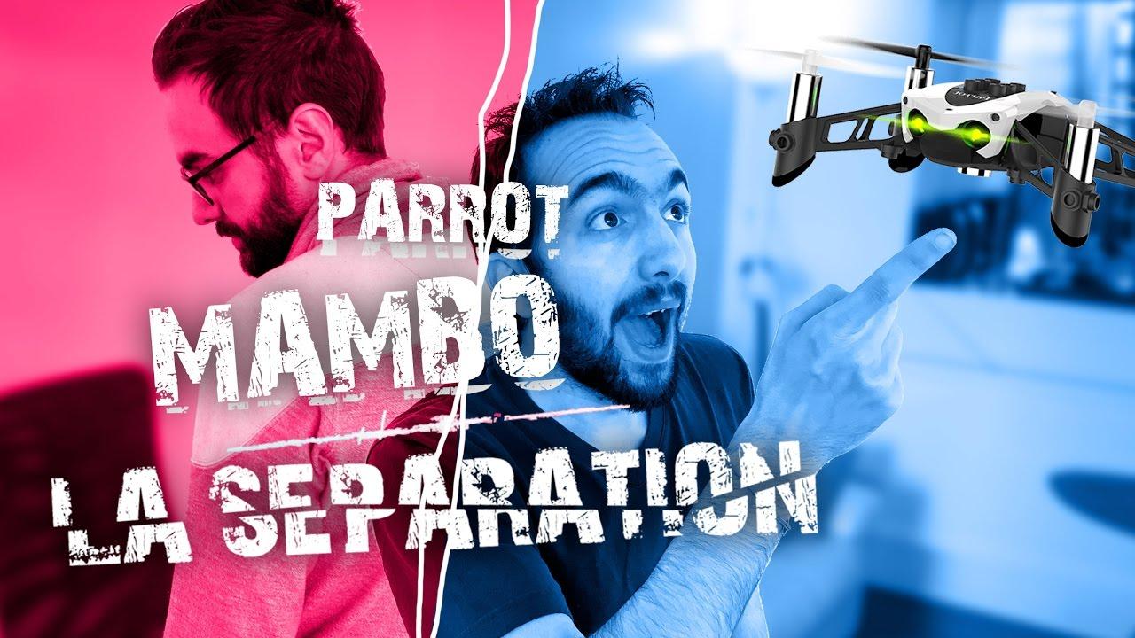 Drone-Parrot-Mambo-LA-SEPARATION