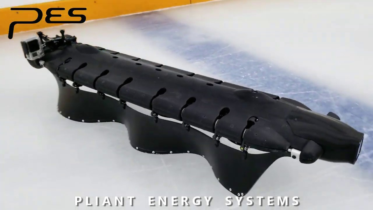 Ice-skating-Robot-Also-Swims