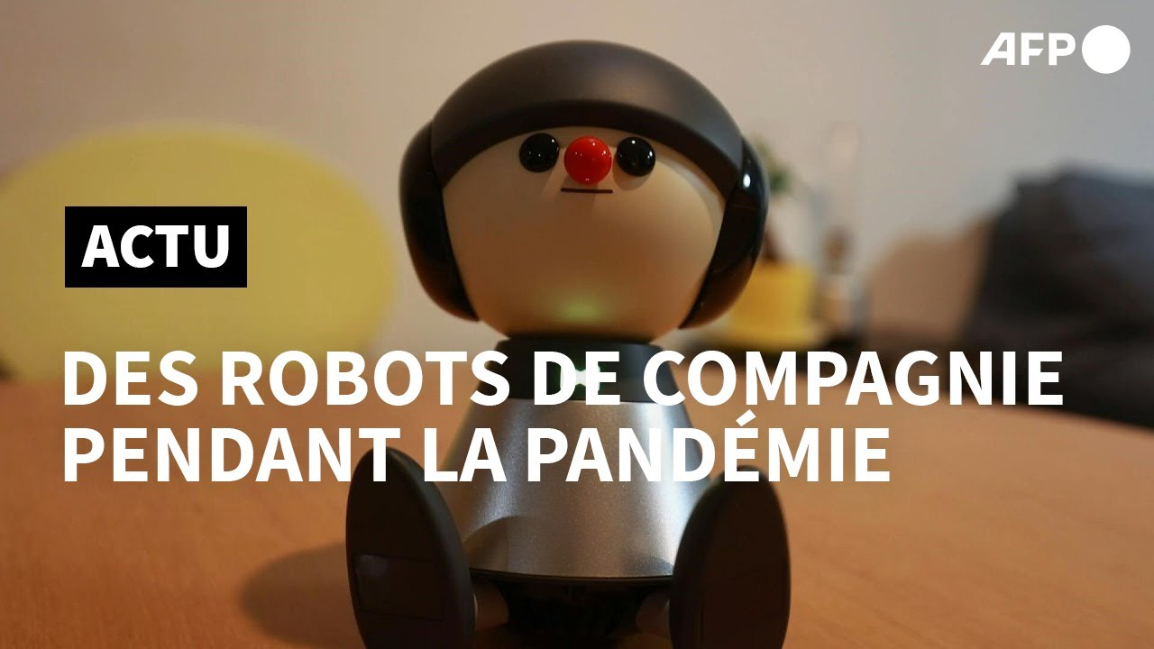 Japon-des-robots-compagnons-offrent-du-reconfort-pendant-la-pandemie-AFP