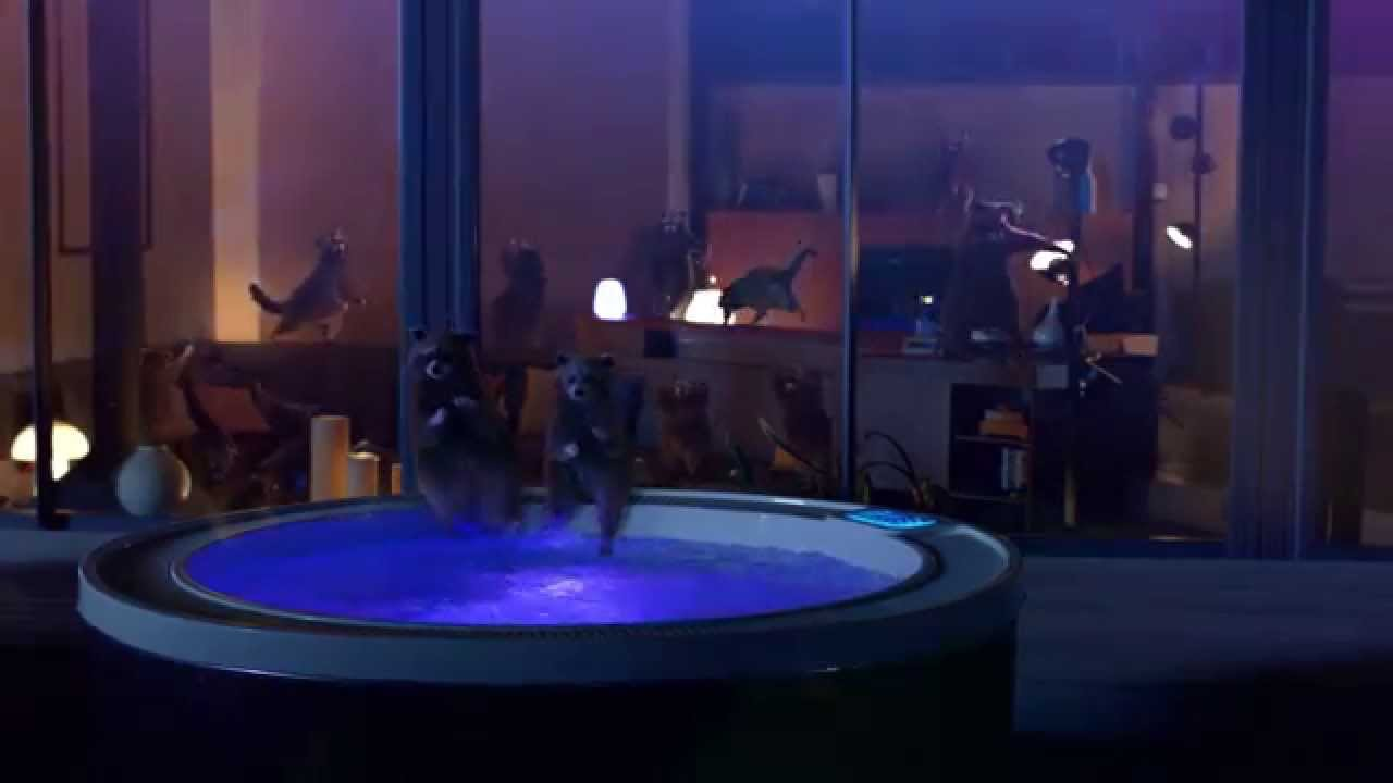Life-Is-On-by-Schneider-Electric-Raccoon-Dance-Party