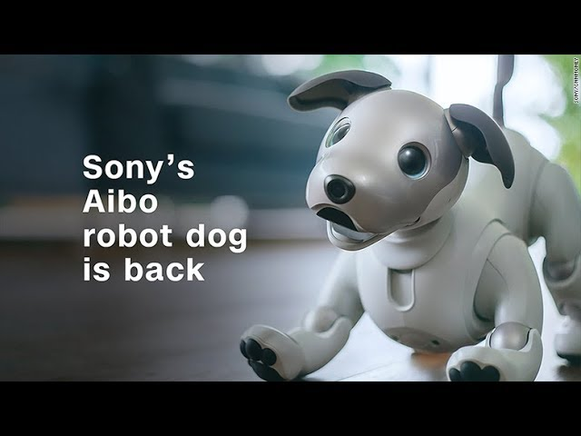Sonys-Aibo-robot-dog-is-back